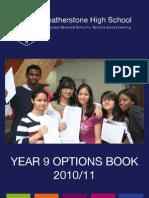 Options_2011[1]