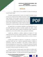 Reflexão-MPV CORRIGIDA