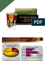 C-Store Landscape Analysis 2008