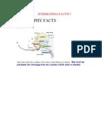 Interesting Facts PT Geografie