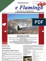 The FLAMINGO  FEBRUARY