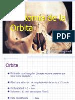 Anatomía_de_la_O...[1]