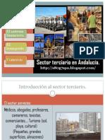 Sector Terciario Andaluz
