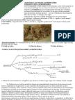 Unidad Adaptada 7-La Vida en La Prehistoria