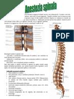 Anestezie spinala