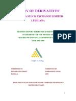 52232983 Ludhiana Stock Excahnge (1)