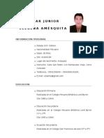 Curriculum - César Junior Llerena Amésquita
