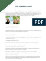 Lesiones de Rodilla_LCA
