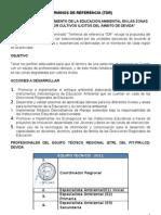 TDR Equipo tecnico