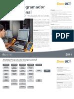 analista-programador-computacional