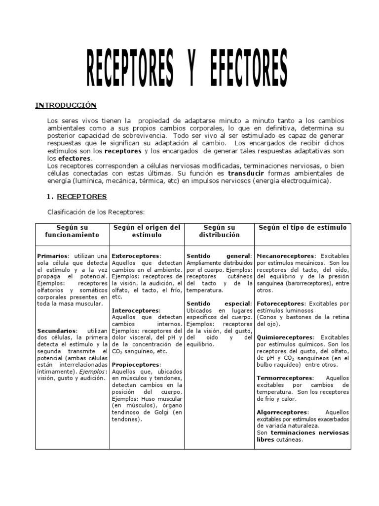 Receptores y Efectores