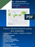 Lecture 9_Biogeochemical Cycle