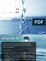 overview of this fluid world with a focus on the consulting offering