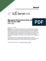 SQL 2008 Unstructured Data