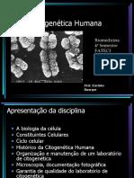 _Citogenética