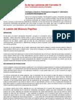 26º Guía Rápida de las Lesiones del Corredor 3.