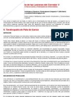 30º Guía Rápida de las Lesiones del Corredor 5.