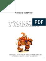 1proiecttematictoamna