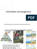 Actividades antropogenicas
