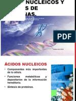 Acidos nucleicos y prot I°A Martes 7 Sept