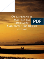 Os Diferentes Matizes Da EA Brasil