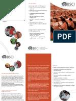 Bsci Leaflet 2009