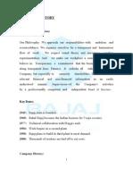 Bajaj Automobiles Sales Marketing Project (Print Out)