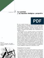 Lehninger CAPITULO 03