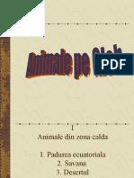 Animale Pe Glob