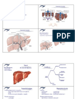 7.8_tumorile_hepatice