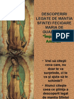 21066873 Sfanta Fecioara Maria de Guadalupe