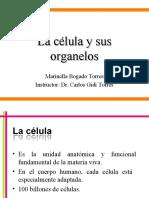 1 La célula fisiología