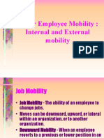 Internal and External Mobility