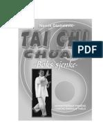 Namik Dizdarevic - Tai Chi Chuan_Boks Sjenke