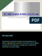 El Metabolismo Celular t Fresca