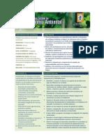 02A Especializacion Economia Ambiental