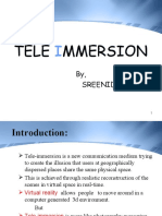 SeminarTele Immersion