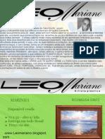 Portifólio -  LEOMARIANO artista plástico