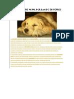 Dermatitis Acral Por Lamido en Perros Tesis