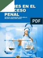 Los Bienes en el Proceso Penal
