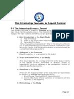 Internship Report Format Etc Feb20 2011