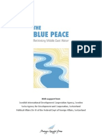 DDC - The Blue Peace - Summary