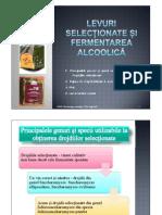 Levuri selecționate și fermentarea alcoolică(1)