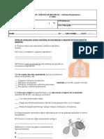 Mini Teste Sistema Respiratório-2ºP-6º4ª e 6º6ª
