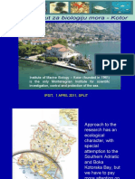 Aleksandar Joksimovic - Multidisciplinary marine research in the south adriatic