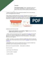 CLASIFICACIÓN DE PUENTE