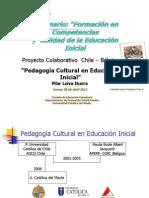 Pedagogia Cultural