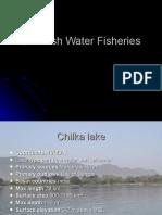 Brackish Water Fisheries