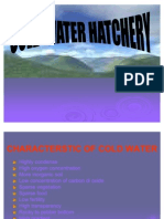 Cold Water Hatchery