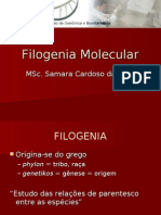 Filogenia Molecular
